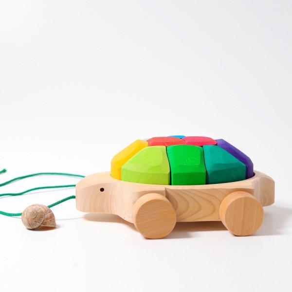 Nachzieh Schildkröte Regenbogen